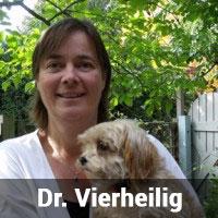 Dr. Vierheilig